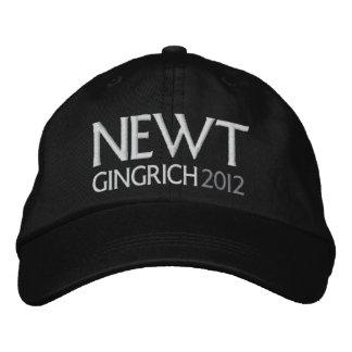 NEWT para o presidente 2012 Bonés