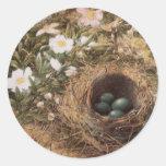 Ninho e Dogroses dos pássaros pelo monte, belas ar Adesivos Redondos