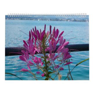 No. 7 do calendário do amor da flor
