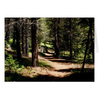 No cartão de nota de Colorado do parque do inverno