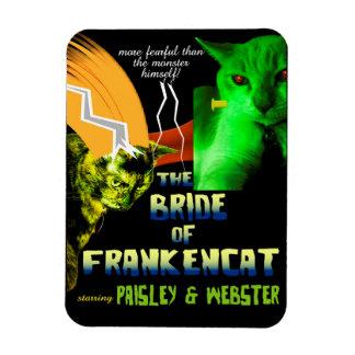 Noiva do ímã de Frankencat