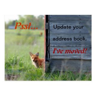 Nós movemos o cartão (a raposa vermelha no