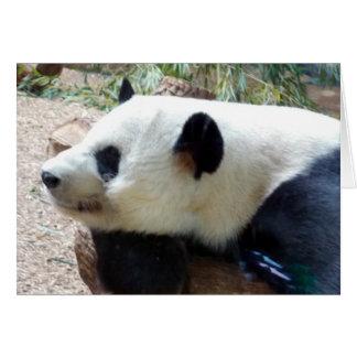 Nota sonolento ou cartão da panda