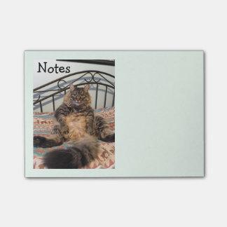 Notas Huggable grandes de Kimber do gato Sticky Note