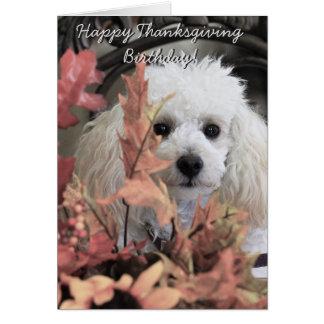 Notecard do cão de caniche do aniversário da acção cartão de nota