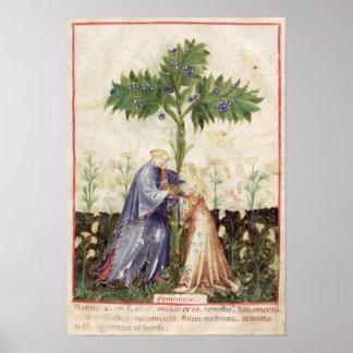 Nouv Acq LatFennel, 'de Tacuinum Sanitatis Pôster