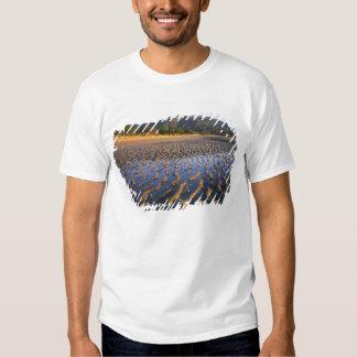 Nova Zelândia, parque nacional de Abel Tasman, T-shirt