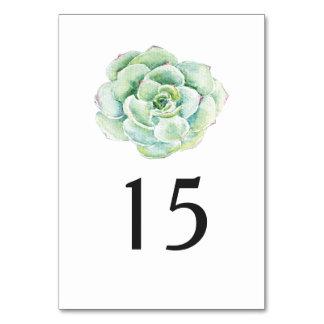 número da mesa do casamento do succulent da