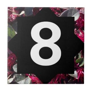 Número das flores e da estrela do primavera