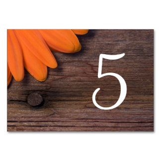 Números rústicos da mesa do casamento do celeiro