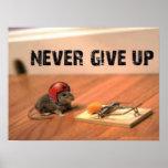 Nunca dê o poster acima incentivando do rato