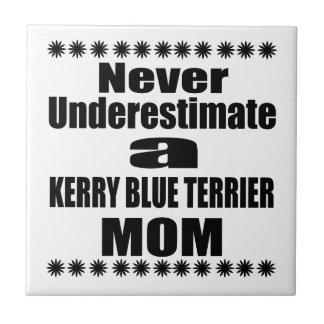 Nunca subestime a mamã de TERRIER de AZUL de KERRY
