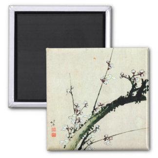 o 梅花, ameixa do 北斎 floresce, Hokusai, Ukiyo-e Ímã Quadrado