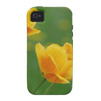 o amarelo floresce 14 mf capinhas para iPhone 4/4S