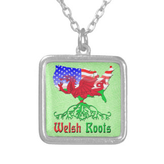 O americano Galês enraíza a colar