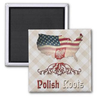 O americano polonês enraíza a imã de geladeira