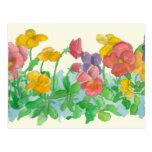 O amor perfeito do arco-íris floresce a arte da cartão postal