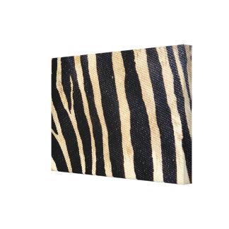 O animal dos animais selvagens da zebra listra a