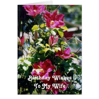 O aniversário deseja, esposa, flores bonito do cartao