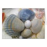 O aniversário do amigo dos Seashells Cartão
