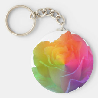 o arco-íris aumentou chaveiros