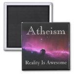 O ateísmo, realidade é impressionante imãs de refrigerador