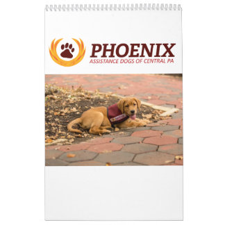 O auxílio de Phoenix persegue o calendário