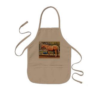 O avental do miúdo - cavalo do Palomino