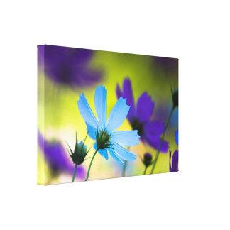 O azul roxo do paraíso floresce a arte da parede impressão em canvas