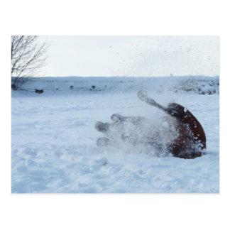 O banho da neve - cartão