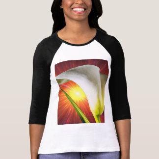 o bella das mulheres + camisa do raglan t da luva