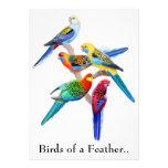 O Birds of a Feather repete mecanicamente o convit