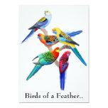 O Birds of a Feather repete mecanicamente o Convite 12.7 X 17.78cm