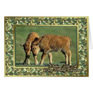 O bisonte paire cartão de Natal animal