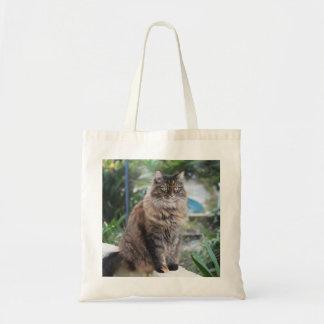 O bolsa bonito de Cassie do gato