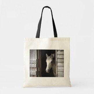 O bolsa cinzento do orçamento do cavalo da égua