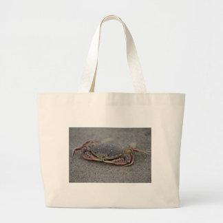 O bolsa da cidade do oceano - caranguejo
