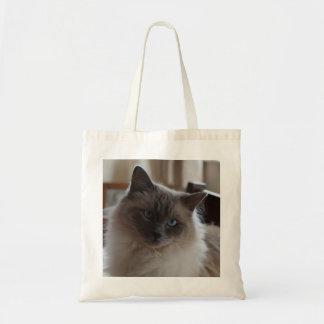 O bolsa do gato de Ragdale