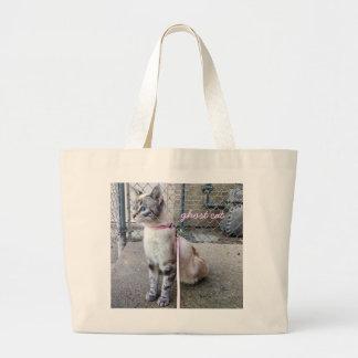 O bolsa do gato do fantasma