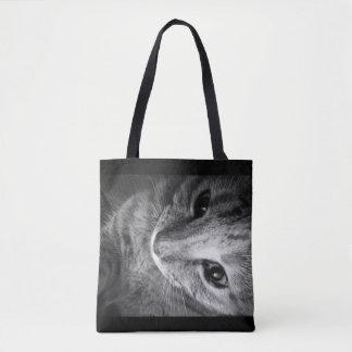 O bolsa do gato - olhos de gato bonitos
