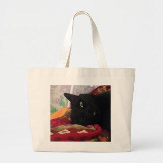 O bolsa do gato preto