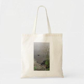 O bolsa do lago