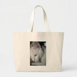 O bolsa, gato branco