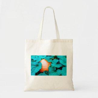 O bolsa grande da abóbora