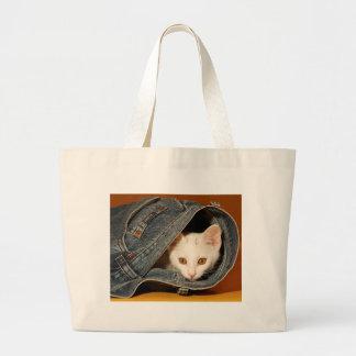 O bolsa Ouro-Eyed do gatinho