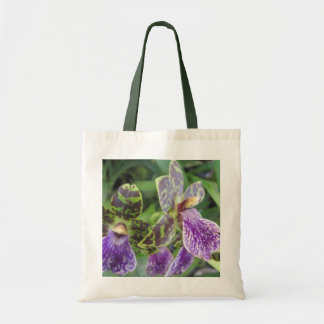 O bolsa verde e roxo da orquídea