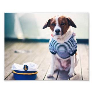O boné do assento do marinheiro do cão veste impressão de foto