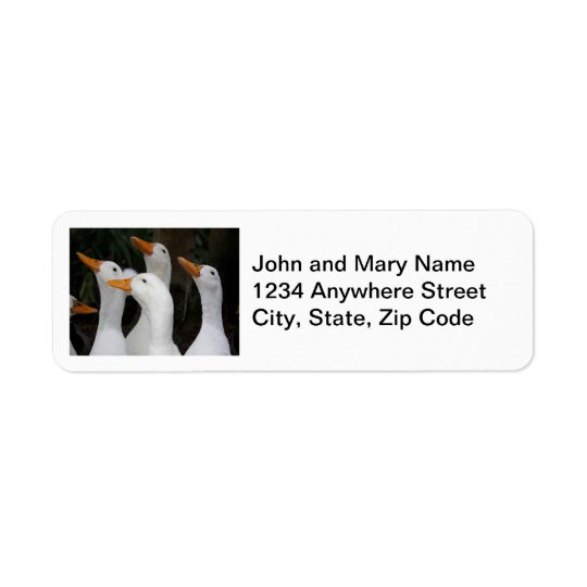 O branco Ducks etiquetas de endereço do remetente Etiqueta Endereço De Retorno