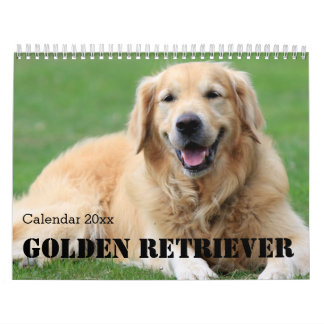 O calendário 2018 do golden retriever