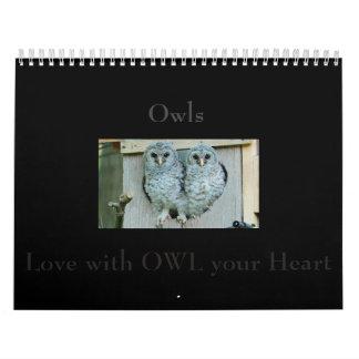 O calendário da coruja, passa um ano com fotos de